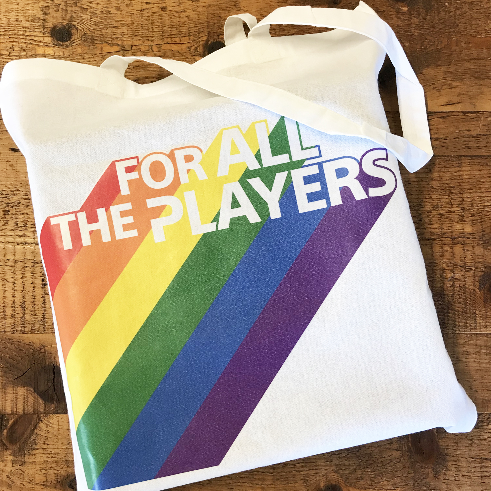 Playstation Event Bags